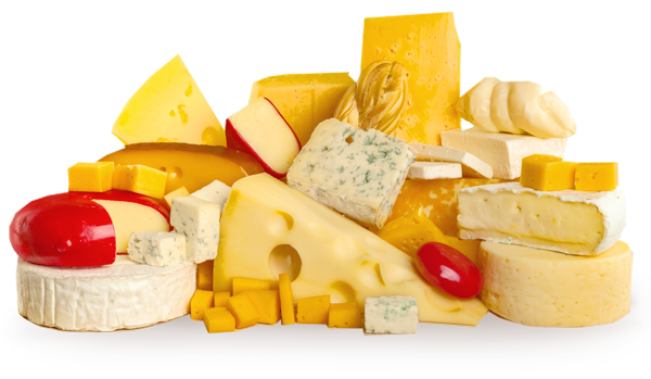how to make hard cheese uk